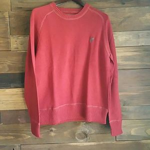 EUC American Eagle Crewneck Sweater, Large